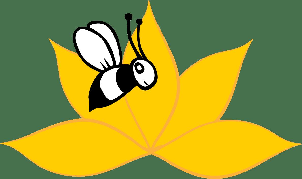 api-zentrum-ruhr